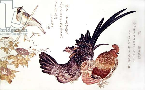 A domestic hen and cock and Japanese bunting on a bamboo shoot, c.1791 (colour woodblock print)