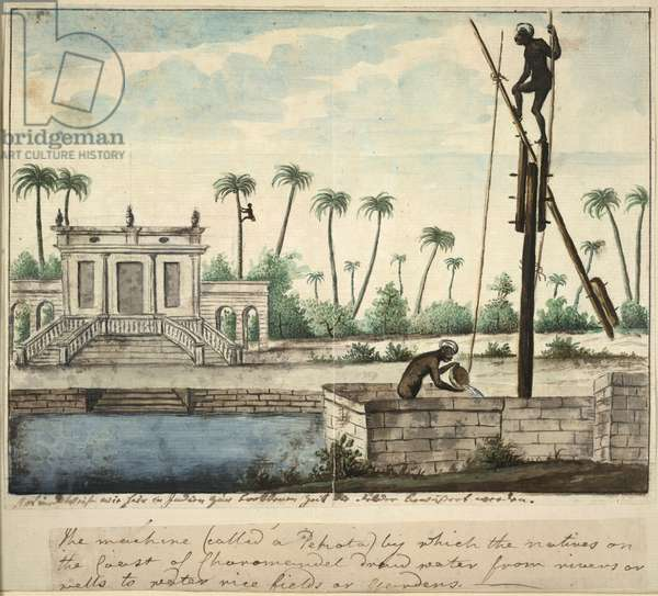 A colonial garden showing irrigation, c.1787 (w/c on paper)
