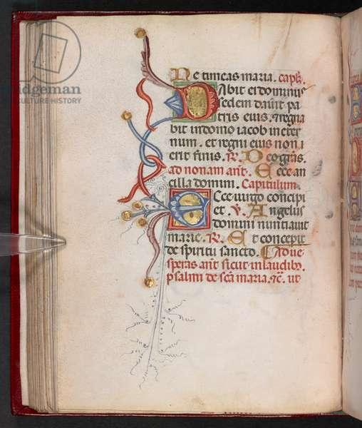 Add. 17466, f.78v