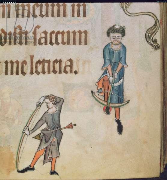 Add 42130 f.56 Border detail of an archer, from the 'Luttrell Psalter', c.1325-35 (vellum)