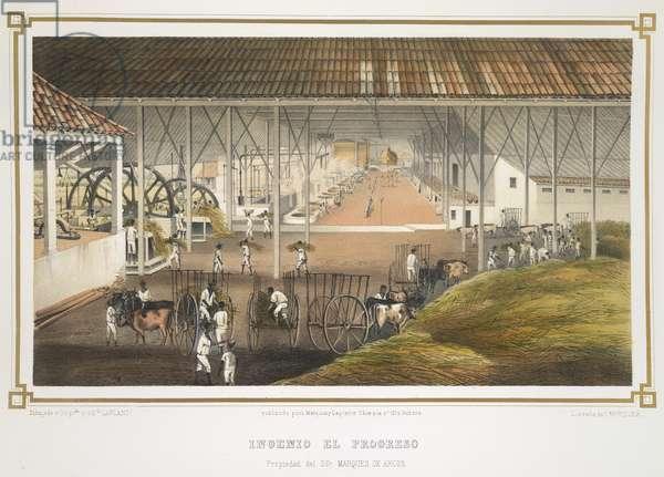 Ingenio el Progreso, 1857 (colour litho)