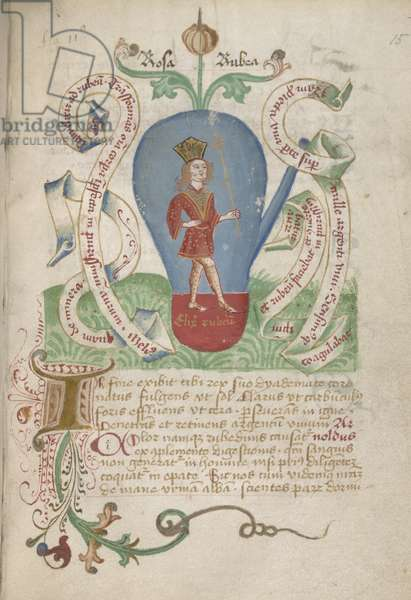 Ms Sloane 2560, f.15 from the Alchemical Treatises, late 15th century (vellum)