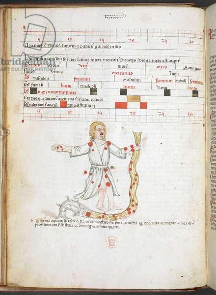 f. 20v.  Aquarius. Introductorius ad Judicia Astrologiae. 14th century