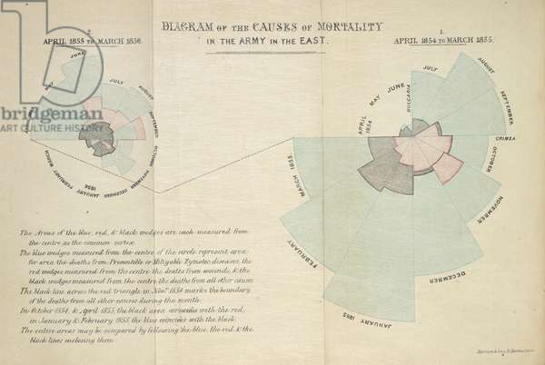 'Diagram of the causes of mortality in the army in the east'. In her seminal 'rose diagram', Florence Nightingale demonstrated that far more soldiers died from preventable epidemic diseases (blue) than from wounds inflicted on the battlefield (red) or other causes (black) during the Crimean war.