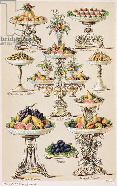 Plate X from 'Beeton's Book of Household Management' vol.2, edited by Mrs Isabella Beeton, 1879-80 (colour litho)