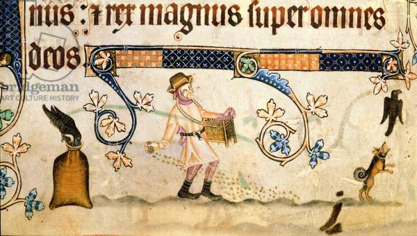 Add 42130 f.170v Sower at Work, from the 'Luttrell Psalter', c.1325-35 (vellum)