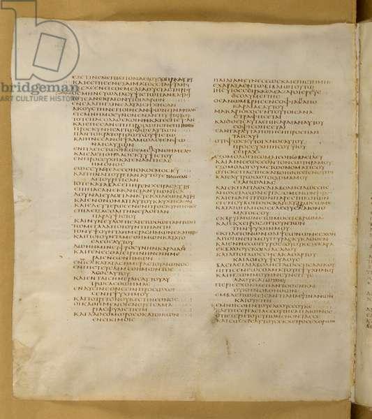 Add 43725, Codex Sinaiticus