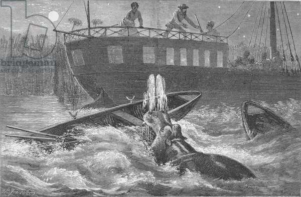 A hippopotamus attacks the boats during the night, from 'Ismailia: A Narrative of the Expedition to Central Africa for the Suppression of the Slave Trade. Organised by Ismail, Khedive of Egypt' by Sir Samuel White Baker (1821-93) (engraving)