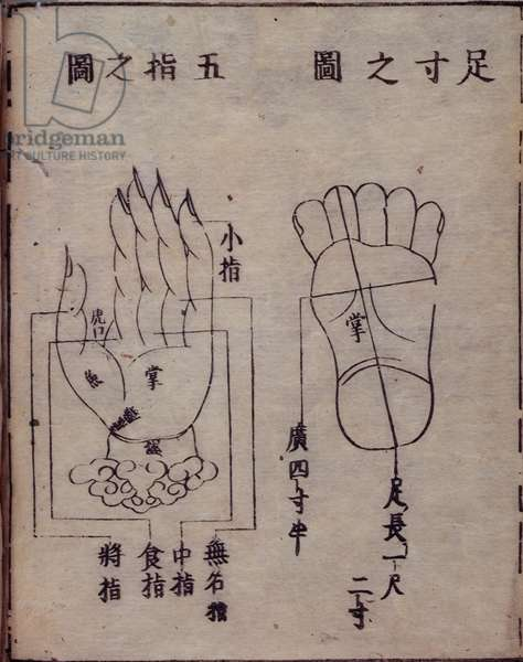 16029.b.5 fol.15v Diagram showing acupuncture points in the hands and feet, from a Japanese commentary of a Chinese work on accupuncture, the Shisijing fahui of 1341 by Hua Shou, Kyoto, 1693 (woodblock print)