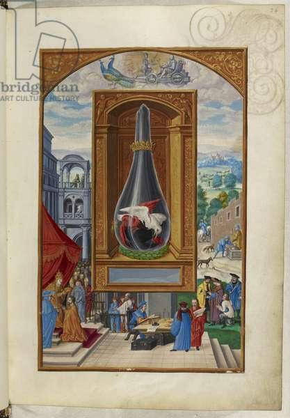 Ms Harley 3469, f.24 Three birds fighting in flask, the Fourth Treatise, from 'Splendor Solis' by Salomon Trismosin, 1582 (vellum)