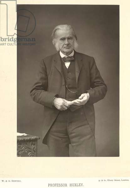 Thomas Henry Huxley (1825-1895). English biologist. Portrait.