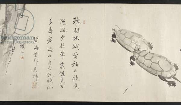 Or. 14872, f.36, Two tortoises, from Yoshida Seisai (handscroll)