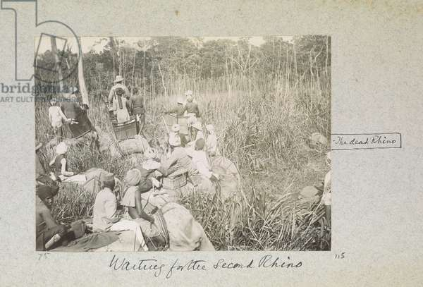 Waiting for the Second Rhino, 'Curzon Collection: Album of snapshots, principally relating to Lord Curzon's time as Viceroy of India', April 1901