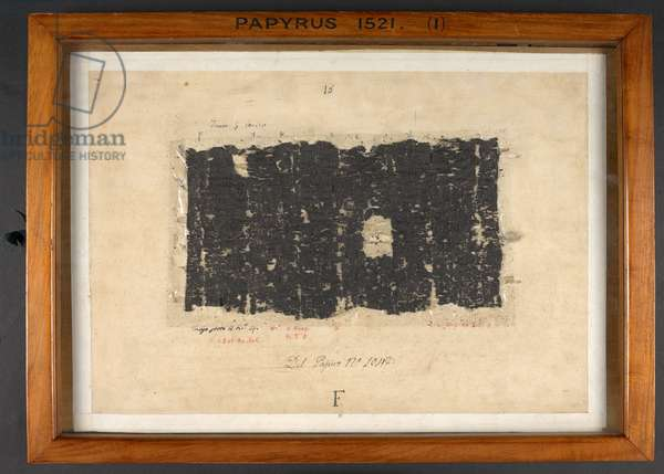 Papyrus 1521, Charred scroll fragments from Herculaneum (papyrus)