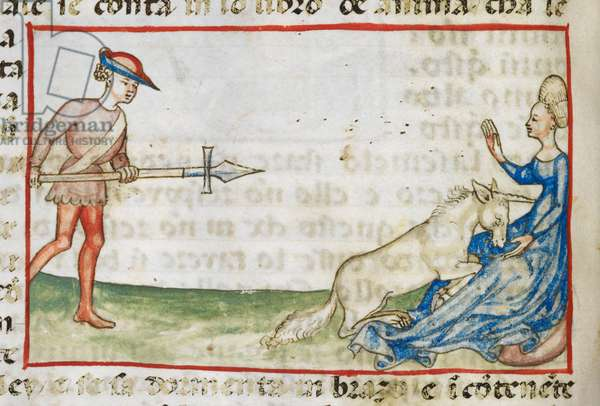 Harley 3448 fol.36v Detail of a tinted drawing of a woman protecting a unicorn from a hunter (vellum)