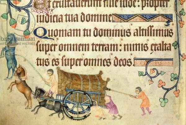 Add 42130 f.173v Psalm 97 Harvest cart manhandled uphill,  from the 'Luttrell Psalter', c.1325-35 (vellum)
