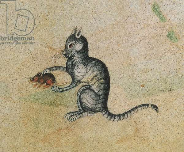 Add 42130 f.190 A domestic cat playing with a mouse, from the Luttrell Psalter, begun prior to 1340 for Sir Geoffrey Luttrell (1276-1345) (detail of 55684)