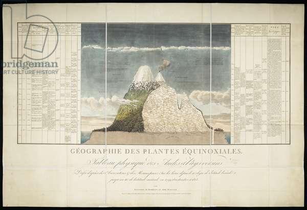 Géographie des Plantes Equinoxiales, 1805 (pen & ink on paper)