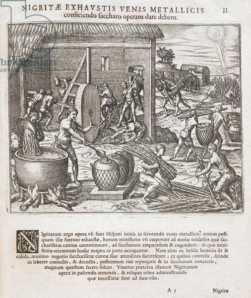 African slaves processing sugar cane for the Spanish, from 'America' by Theodor de Bry, 1595 (engraving)