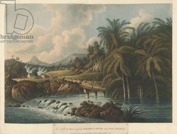 The Roaring River, from Six Views in the Island of Jamaica, 1800 (colour litho)