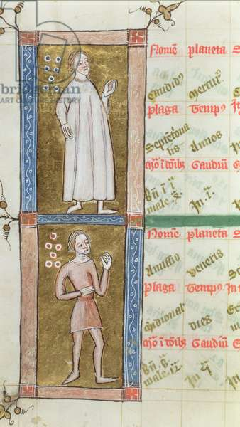 Royal Ms 12 C V fol.19v Figures from an astrological geomancy, late 14th century (vellum)