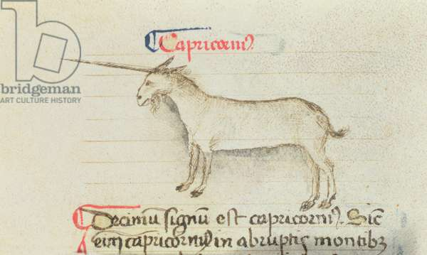 Ms Add 41600 fol.3v Capricorn depicted as a unicorn, Treatise on the Compotus, c.1454 (vellum)