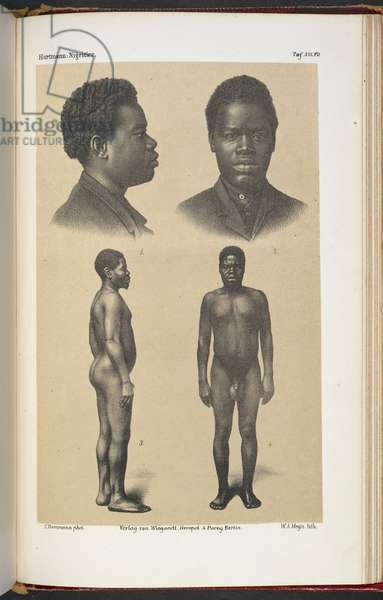 Above, a head and shoulders portrait of man in profile, and full face. Below a naked man