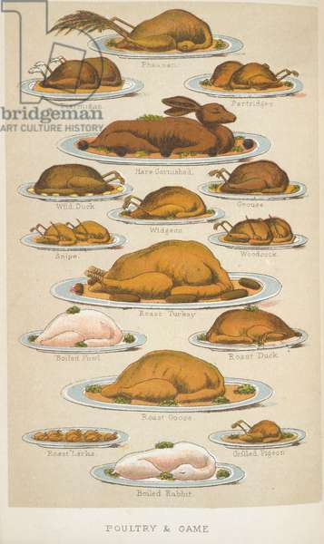 Poultry & Game, from 'Beeton's Book of Household Management', edited by Mrs Isabella Beeton, 1888 (colour litho)