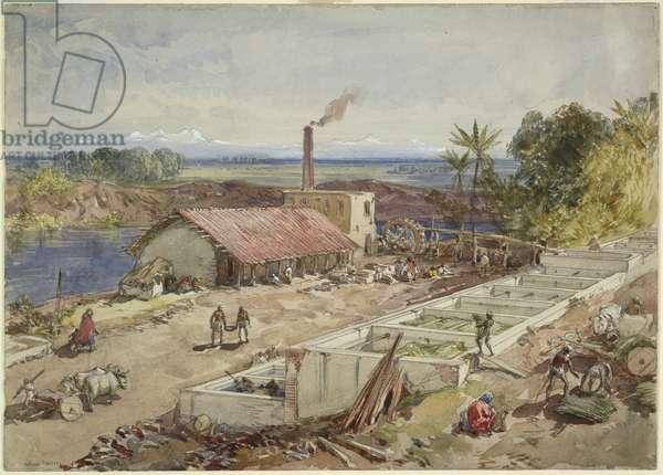 Indigo factory in Bengal, 1863 (w/c on paper)