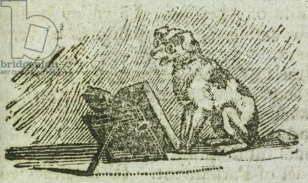 A dog reading