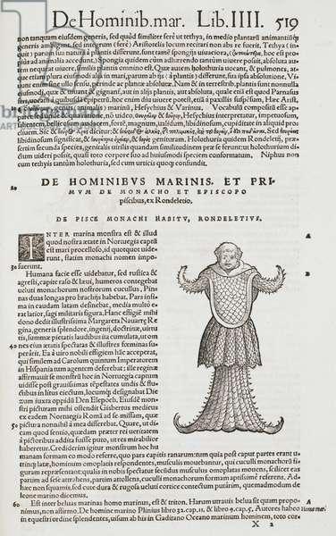 An illustration of the aquatic monk