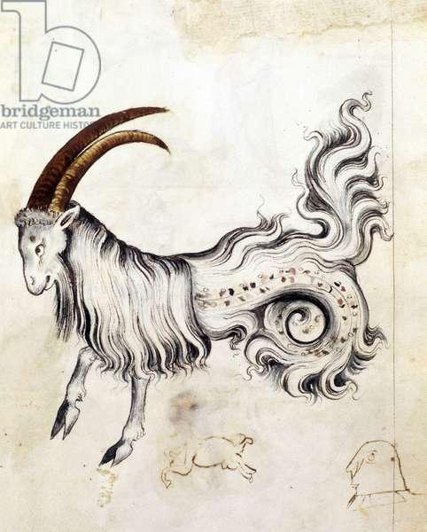 Sloane 3983, f.3v The zodiac sign Capricorn (vellum)