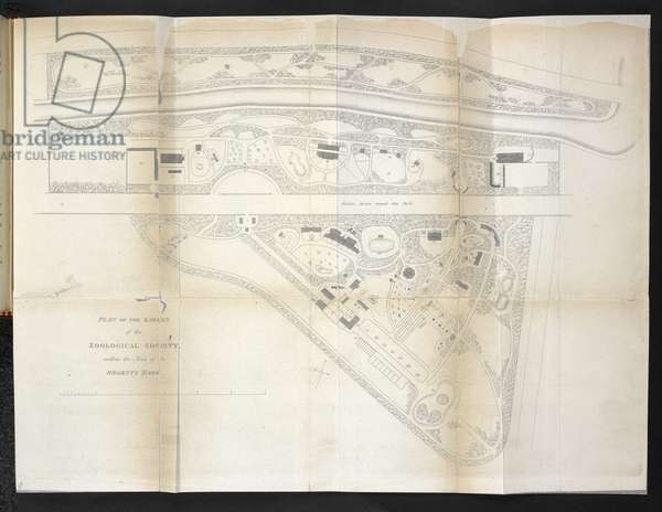 Plan of the garden of the Zoological Society, within the area of the Regent's Park, 1841 (engraving)