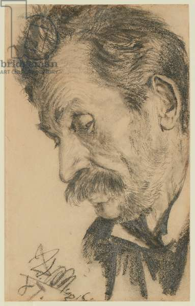 Head of a bearded man, 1887 (black chalk)