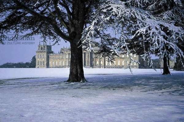Blenheim in the Snow (photo)