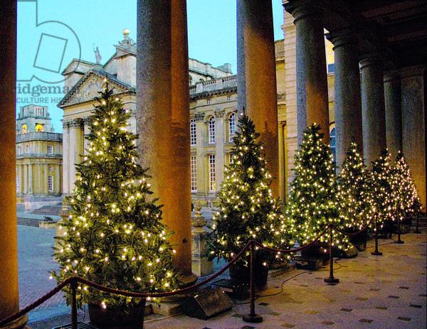 Christmas at Blenheim Palace (photo)