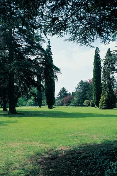 The Arboretum, Blenheim Palace (photo)