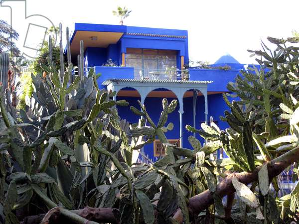 Majorelle garden the house of Yves St Laurent