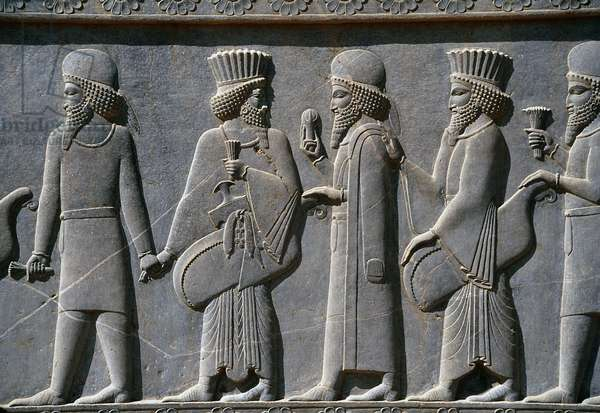 Detail from a processional frieze on East side of the Apadana Palace, Persepolis, Iran, c.518-465 BC (grey stone)