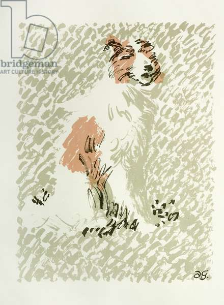 'Collie Dog', 1948 (colour litho)