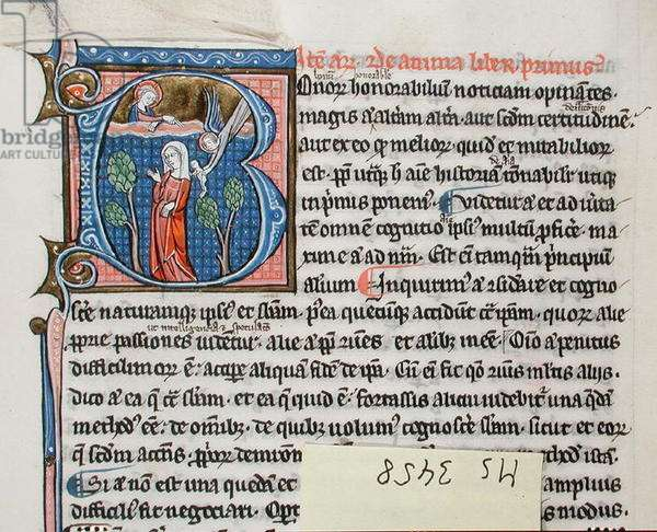 Ms 3458 Angel delivering a baby to a woman to be born, from the 'Physics' of Aristotle (pen, ink & tempera on vellum)