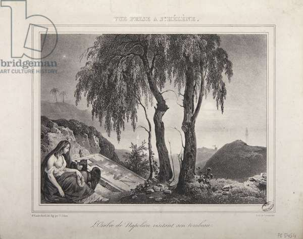 The shadow of Napoleon visiting his tomb, view of Saint Helena (litho)