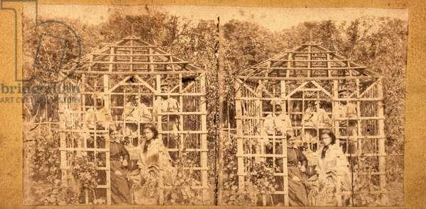 Summer Scene at Bellevue Hospital, New York, NY, US, c.1875 (stereoview)
