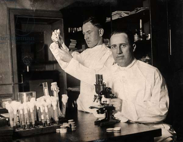 Dr. R. R. Spencer Searching for Treatment for Rocky Mountain Spotted Fever, Washington, DC, USA, c.1916 (silver gelatin print)