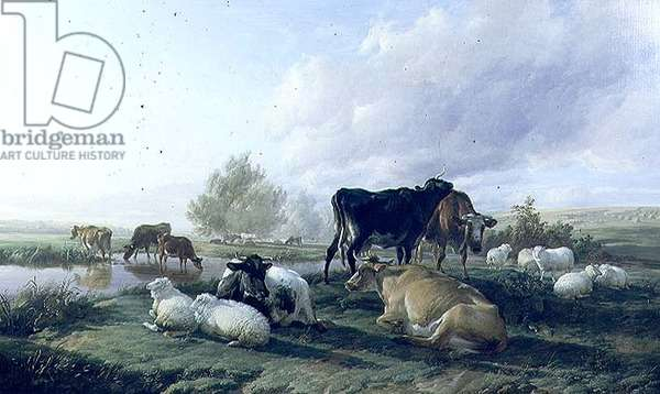 In the White Hall Meadows, Canterbury, 1848