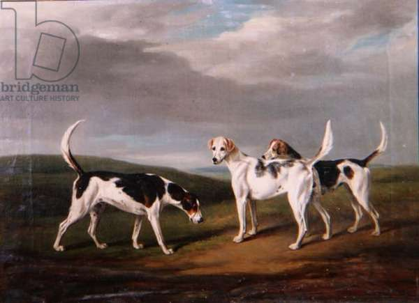 Foxhounds in a Landscape, 1818
