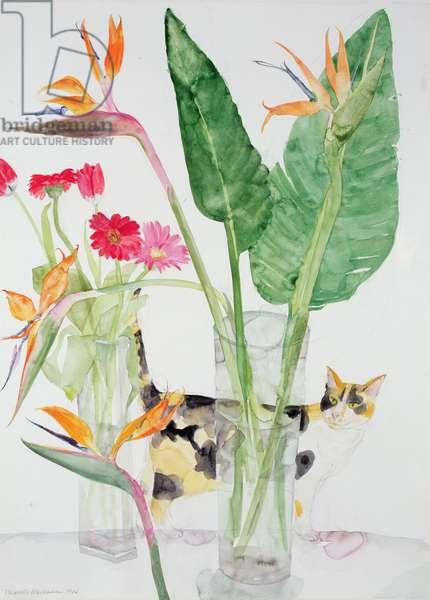 Tortoiseshell Cat and Flowers, 1984 (w/c on paper)