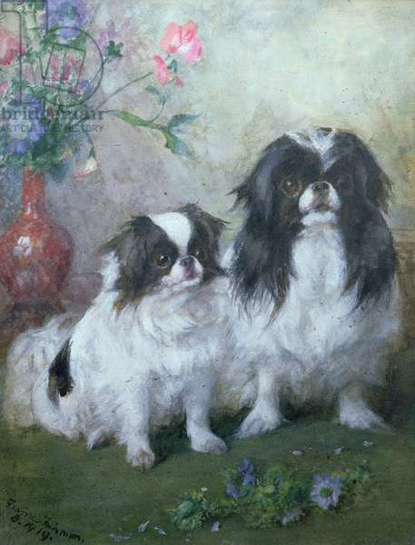 A Japanese Chin Bitch and her Puppy, 1919 (gouache and w/c)