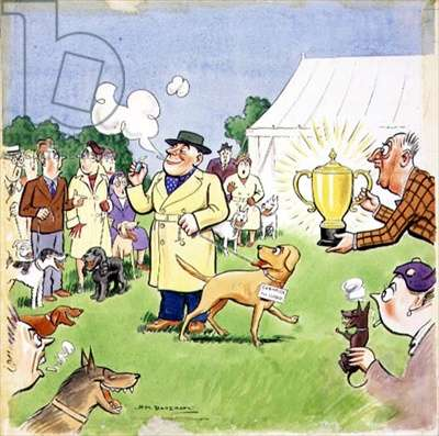 Lighting Up at the Dog Show