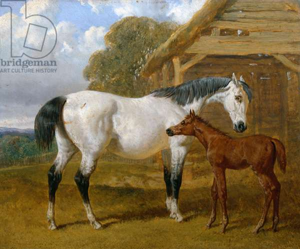 A Mare and Foal before a Barn, 1854 (oil on board)